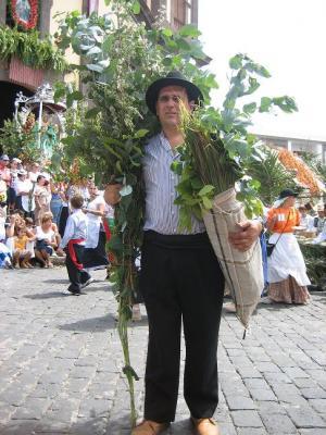 LA ROMERIA DE LAS MARIAS EN GUIA CON AROMAS DE POLEO,EUCALITO Y ROMERO