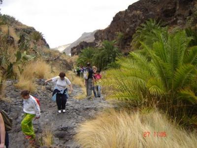 mas imagenes de la salida  al valle de agaete